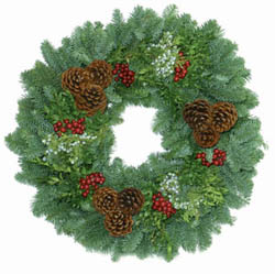 there are two forests of christmas trees one forest is fragrant fresh cut trees displayed indoors in water another forest consists of pre lit life like