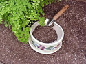 Echter's Potting Mix
